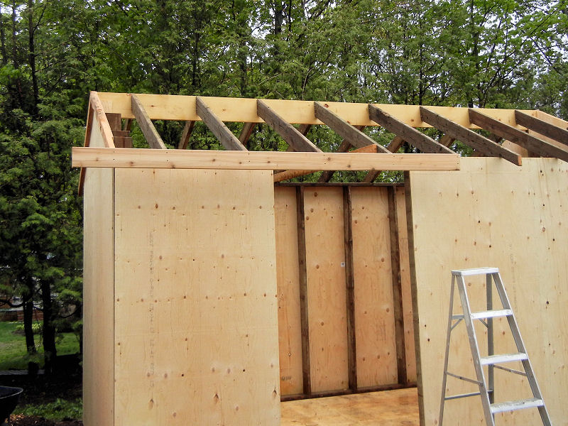 Building a garden shed ibuildit ca for Roof decking thickness